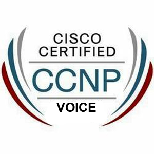 CCNA Training in Mohali